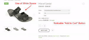 Image of Shoe and White Space on Toronto E-Commerce Site - Bush Marketing Toronto Web Design Company
